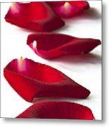 Scattered Rose Petals Metal Print by Zoe Ferrie