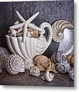 Seashells Metal Print by Tom Mc Nemar