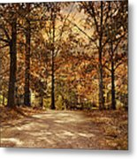 Secluded Entrance Metal Print by Jai Johnson