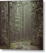 Secret Pathway Metal Print by Christopher Kimmel