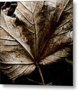 September Metal Print by Odd Jeppesen