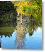 Serene Reflection Metal Print by Julie Palencia