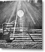 Shadow Metal Print by Darrin Doss