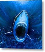 Shark Attack Metal Print by Chris Butler