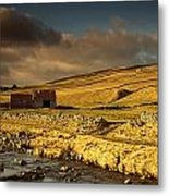 Shed In The Yorkshire Dales, England Metal Print by John Short