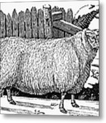 Sheep, 1788 Metal Print by Granger
