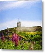 Signal Hill In St. John's Newfoundland Metal Print by Elena Elisseeva