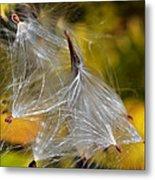 Silky Autumn Metal Print by Susan Leggett
