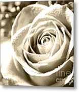 Simple Metal Print by Cheryl Young