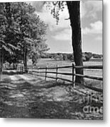 Simple Times Metal Print by Catherine Reusch  Daley