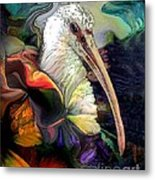 Sir Ibis Metal Print by Doris Wood
