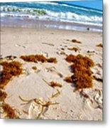 Sitting On The Beach Metal Print by Toni Hopper