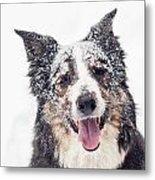Snow Covered Metal Print by Joye Ardyn Durham