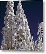 Snow-covered Pine Trees On Mount Hood Metal Print by Natural Selection Craig Tuttle