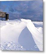 Snowy Day Metal Print by Heiko Koehrer-Wagner