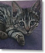 Soffe Metal Print by Suzn Smith