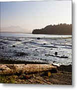 Sointula With The Mountains Metal Print by Taylor S. Kennedy