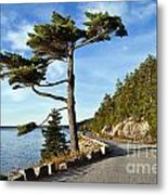 Somes Sound Maine Metal Print by John Greim