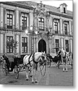 Spain Metal Print by Matt Wilton