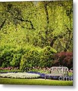 Spring Garden Metal Print by Cheryl Davis