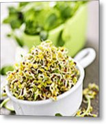 Sprouts In Cups Metal Print by Elena Elisseeva