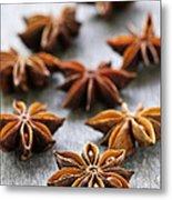 Star Anise Fruit And Seeds Metal Print by Elena Elisseeva