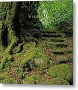 Steps In The Wild Garden, Galnleam Metal Print by The Irish Image Collection