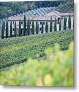 Stone Farmhouse And Vineyard Metal Print by Jeremy Woodhouse