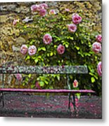 Stop And Smell The Roses Metal Print by Debra and Dave Vanderlaan