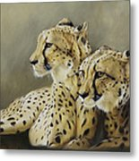 Stranger In The Midst. Metal Print by Lucinda Coldrey