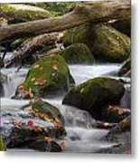 Stream Of Thought Metal Print by Charles Warren