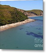 Sunbathing Elephant Seals Along A Beach At Point Reyes California . 7d16058 Metal Print by Wingsdomain Art and Photography