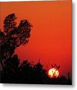 Sundown Metal Print by Todd Sherlock