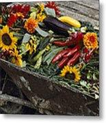 Sunflowers, Dahlias, Eggplants, Pepper Metal Print by Jonathan Blair