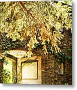 Sunlit Stone Building With Grapevines Metal Print by HD Connelly