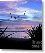 Sunset Down Under Metal Print by Karen Lewis