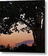Sunset Over A Witness Tree Metal Print by Dave Sandt