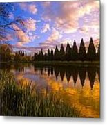 Sunset Reflection On A Pond, Portland Metal Print by Craig Tuttle