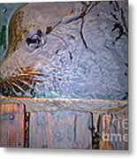 Surfacing Metal Print by Gwyn Newcombe