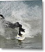 Surfing 396 Metal Print by Joyce StJames