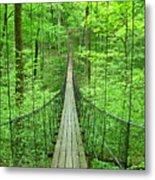 Suspension Bridge Metal Print by Daniel Muller