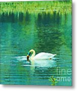 Swan Lake Metal Print by Judi Bagwell