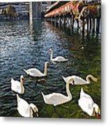 Swans Of The Chapel Bridge Metal Print by George Oze