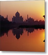 Taj Mahal & Silhouetted Camel & Reflection In Yamuna River At Sunset Metal Print by Richard I'Anson