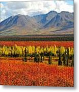 Talkeetna Mountains Moment Metal Print by Alan Lenk