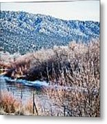Taos Creek Metal Print by Lisa  Spencer