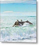Tasman Sea Metal Print by MotHaiBaPhoto Prints