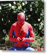 Texting On The Web Metal Print by Michael Wilcox