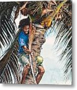 The Coconut Tree Metal Print by Gregory Jules