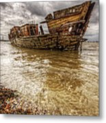 The Gull Metal Print by Lee-Anne Rafferty-Evans